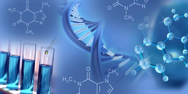 Marktbericht über Biphenyltetracarbonsäuredianhydrid (BPDA) mit Zukunftsprognose bis 2025
