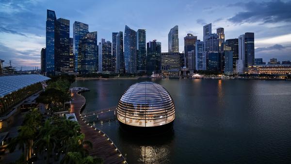 """Apfels""""schwimmender"""" Laden in Singapur wird am 10. September eröffnet"""